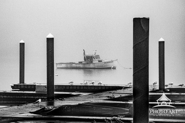 A  thick spring fog shrouded the Harbor boats creating a moody ghostly effect.